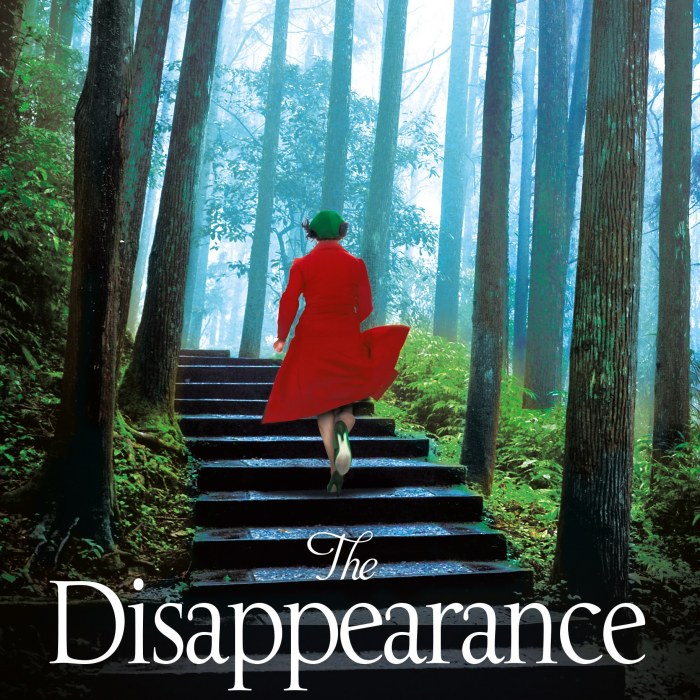 THE DISAPPEARANCE Out Now!