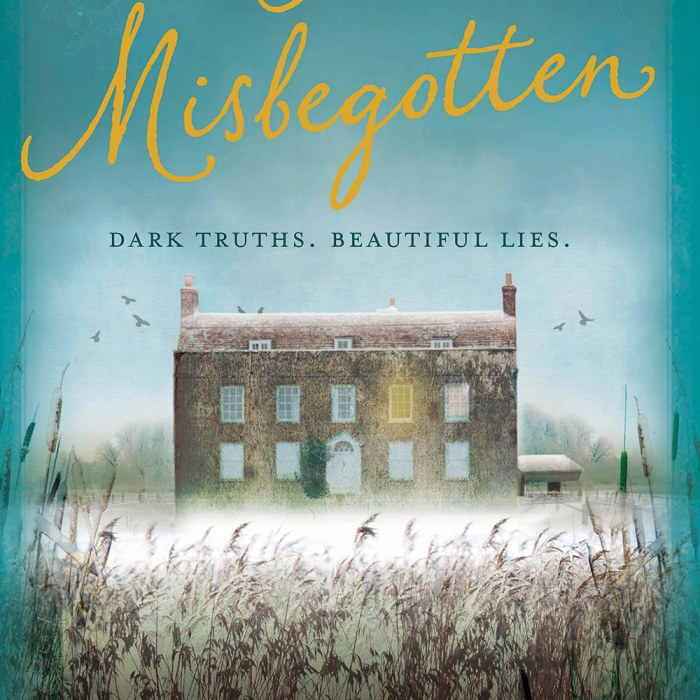 The Misbegotten Review - Novelicious